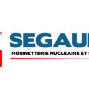 segault